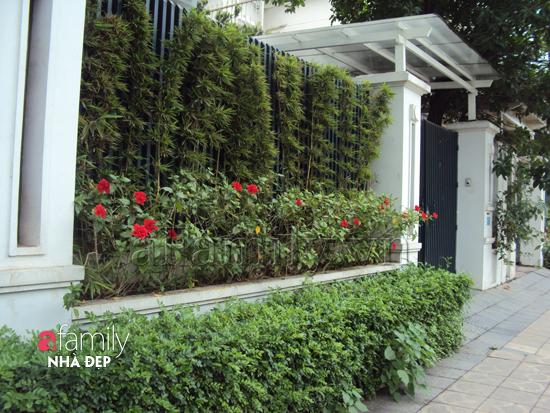 Tạo không gian xanh cho nhà phố